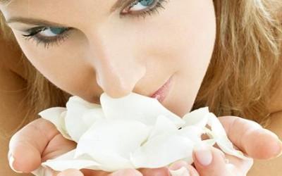 Los conservantes mas utilizados en cosmetica